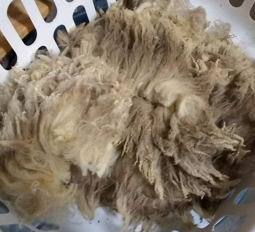 COMFORT (baby fleece)