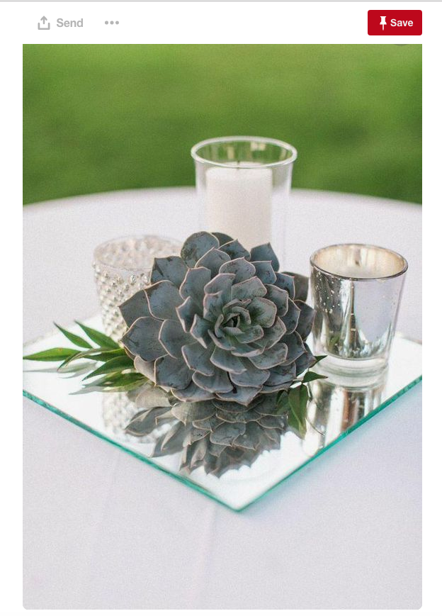 Succulents are trending right now from backyards to weddings. Why not include them in your centerpieces?