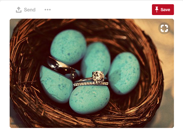 The color in this wedding photo is remarkable. A love bird themed wedding can be whatever you make it to be!