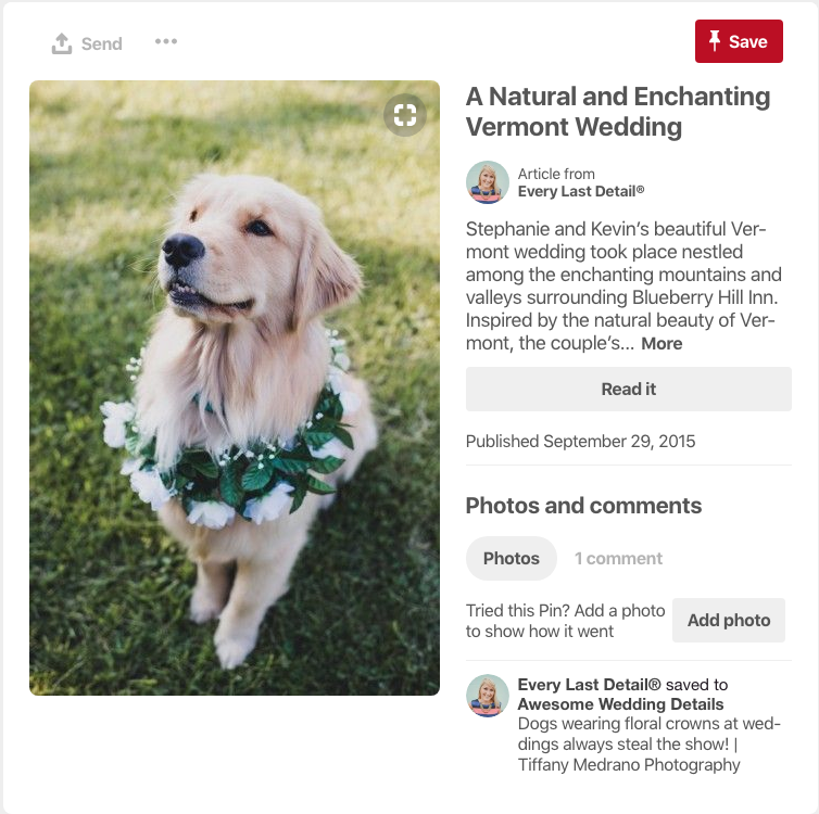 Even your pup can get involved in the natural themed wedding!