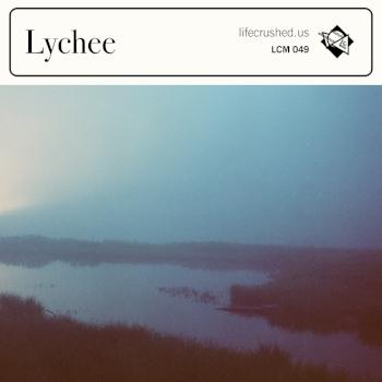 lcm049cover.jpg