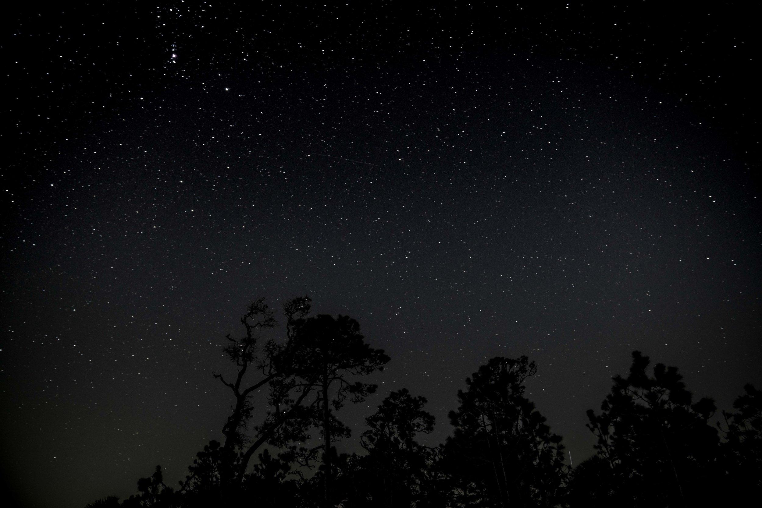 Stars over Little Tybee Island via micahdeyoung.com