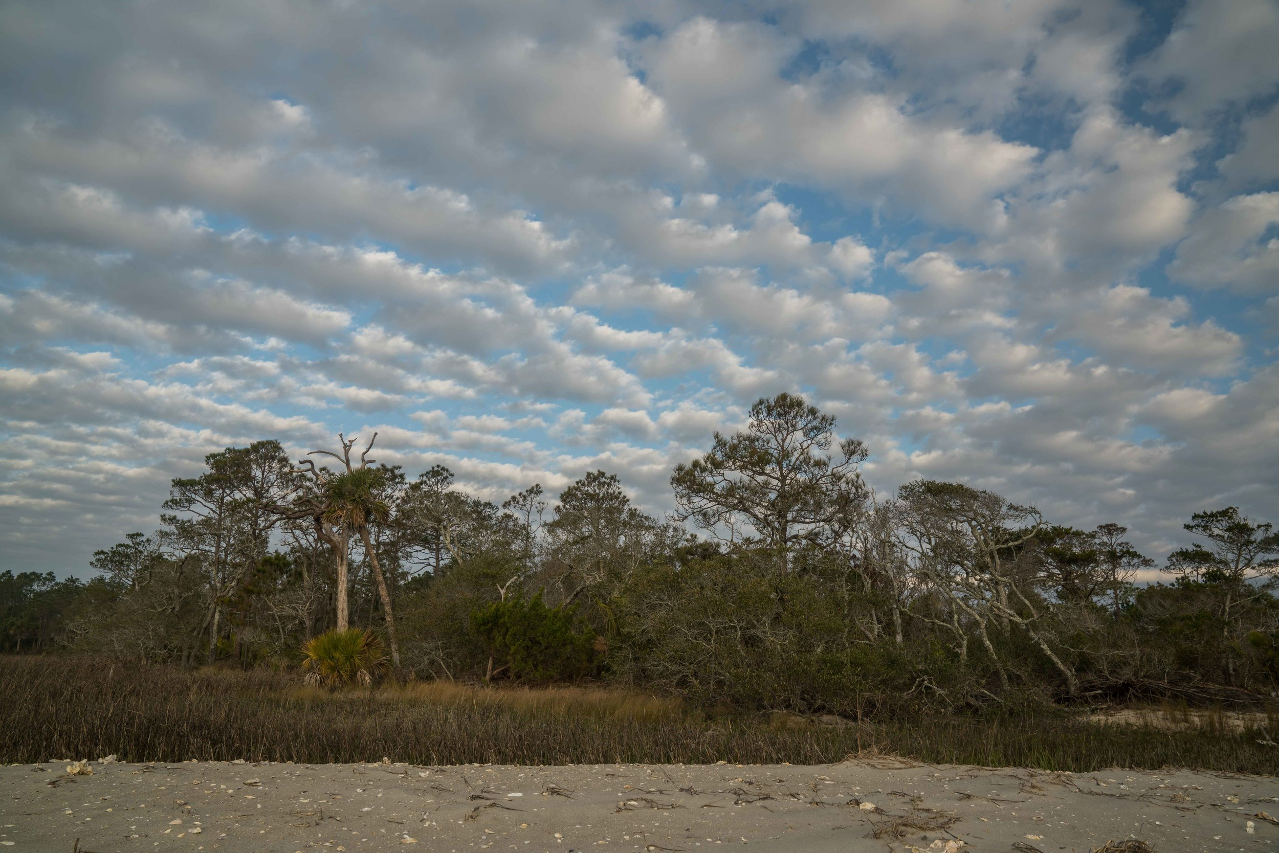Altocumulus over Little Tybee Island via micahdeyoung.com