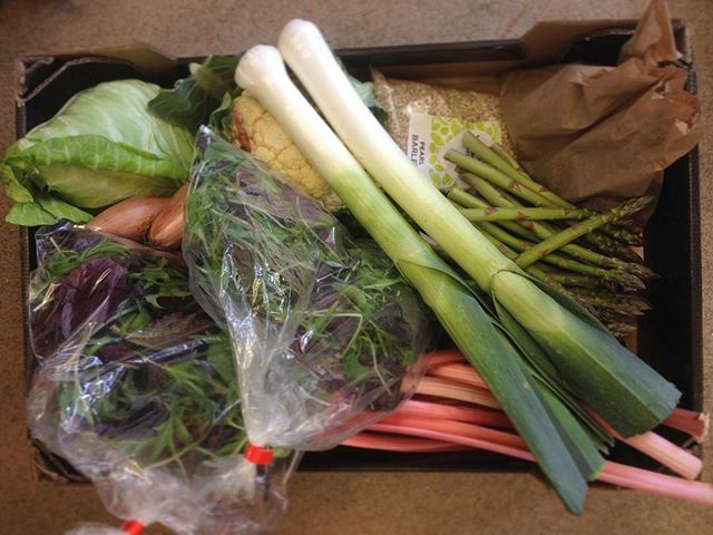 A box of delicious locally grown veg and other goodies for tonight's supper club. #melloview . . . . . . #smallholdinglife #homesteading #homestead #axevalley #springfeasts #supperclub #somerset #winsham #leeks #asparagus #salad #hispi #vegbox #organic #eatlocal