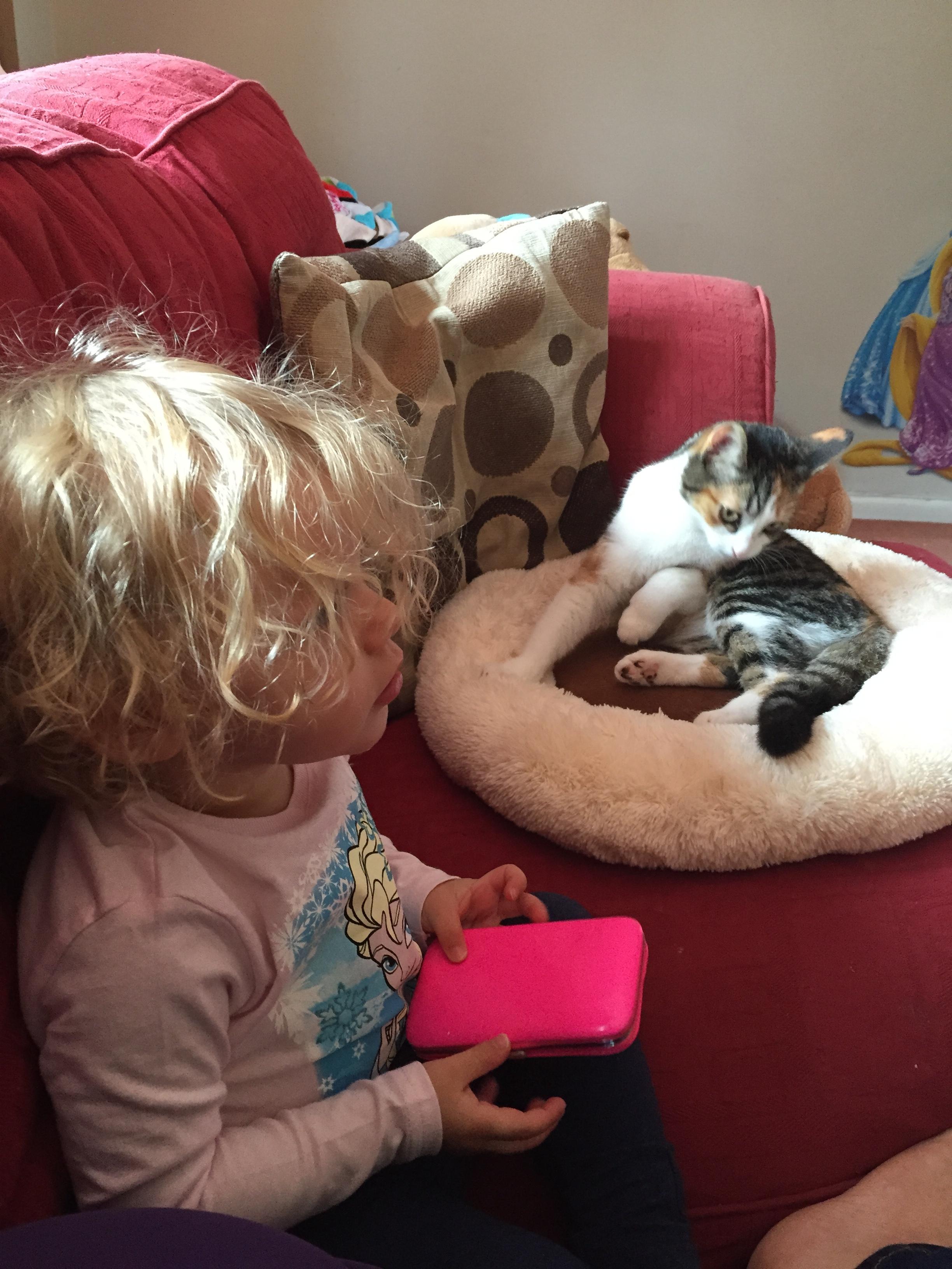 baby and kitten © mebecomingmum