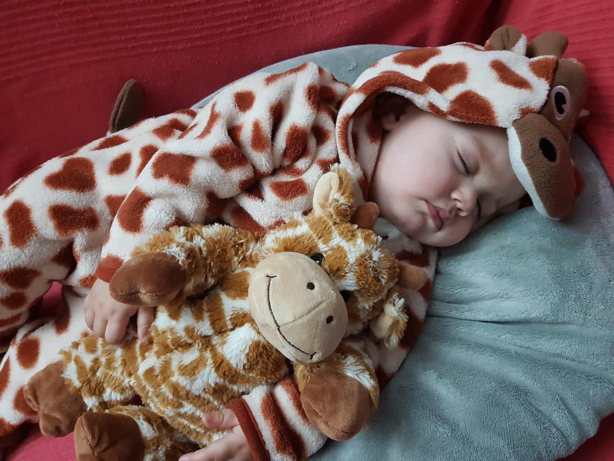 hotwaterbottleshop.co.uk Plush Microwavable Giraffe