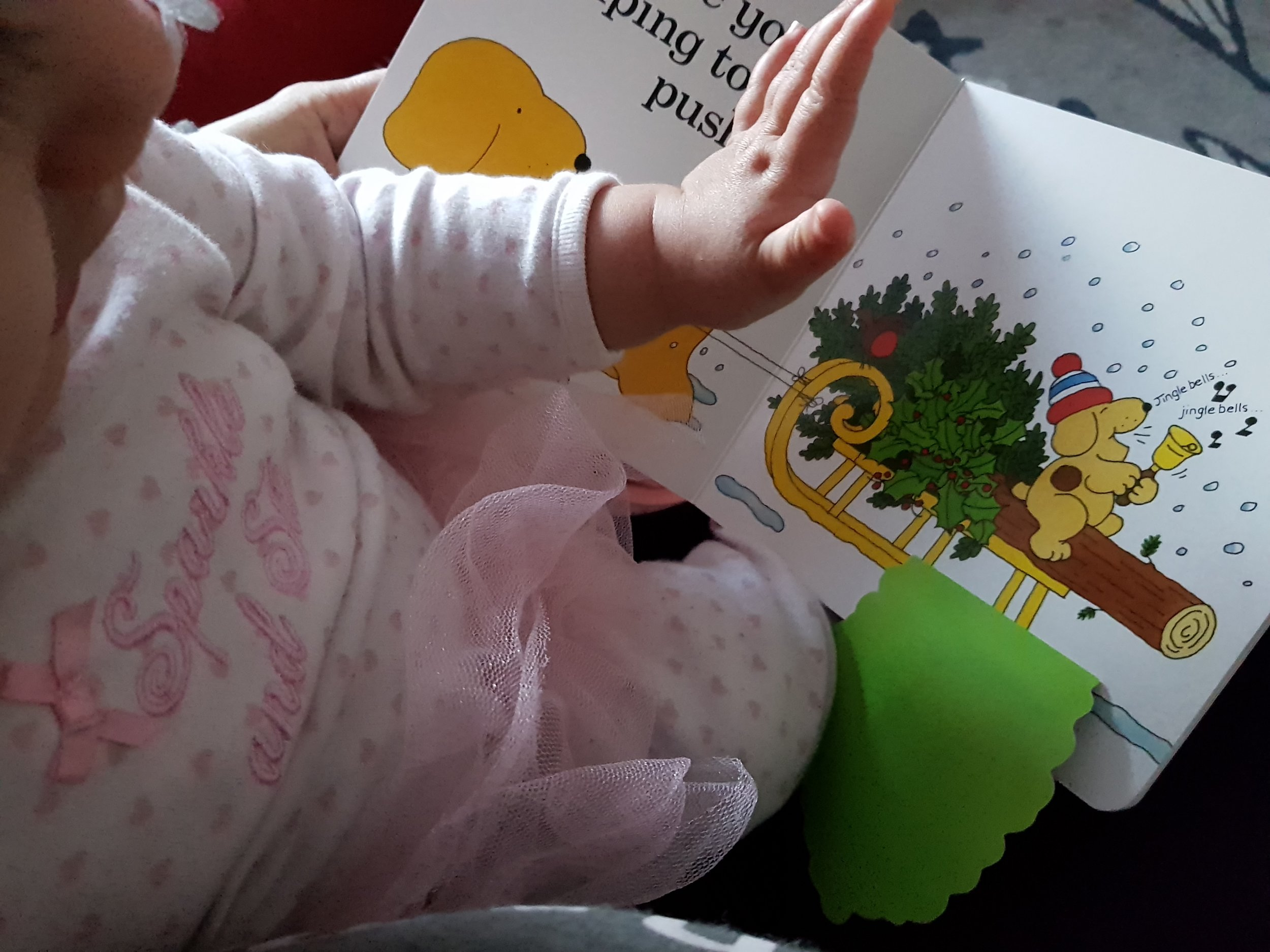 Spot's First Christmas lift flap book