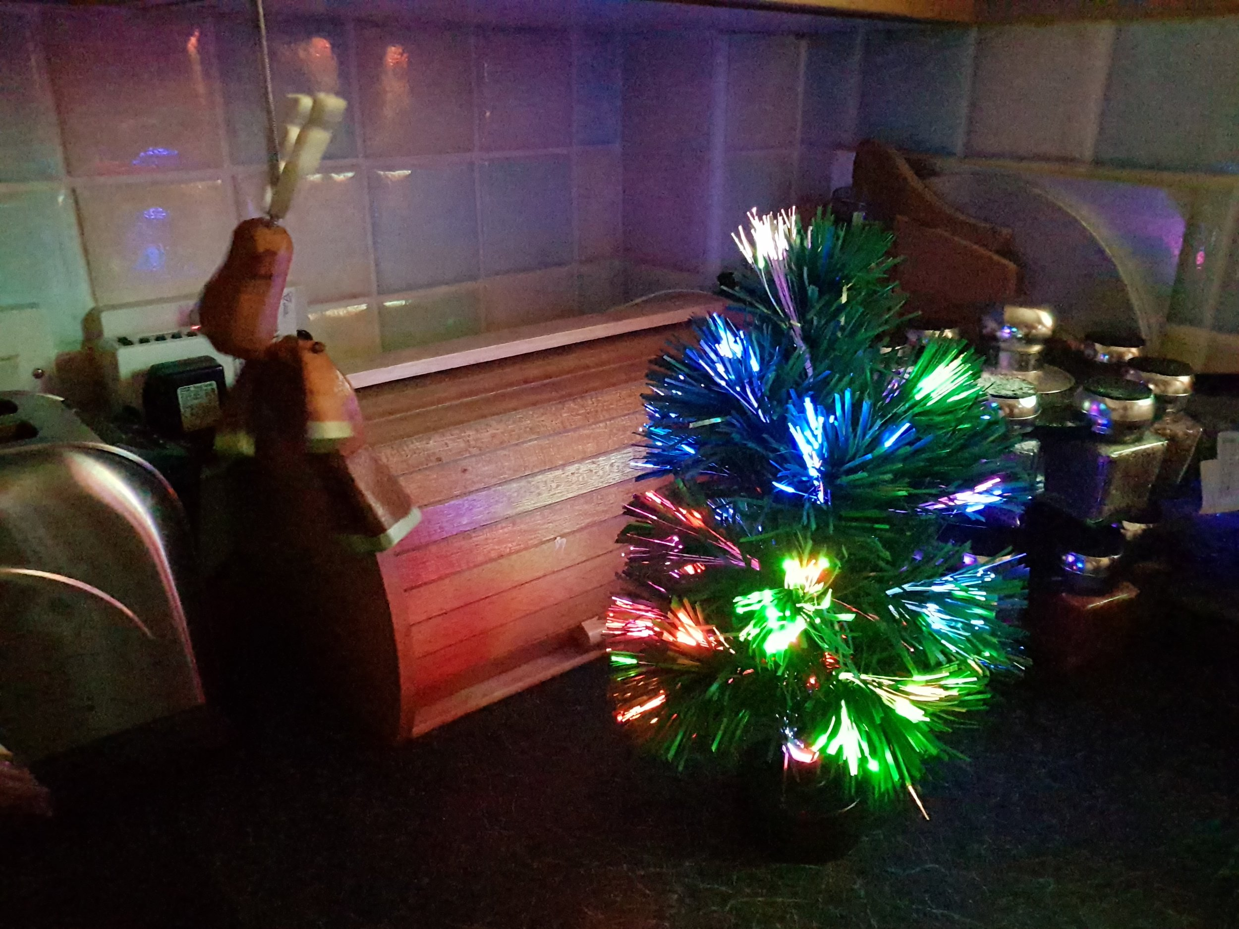 Fibre optic Christmas