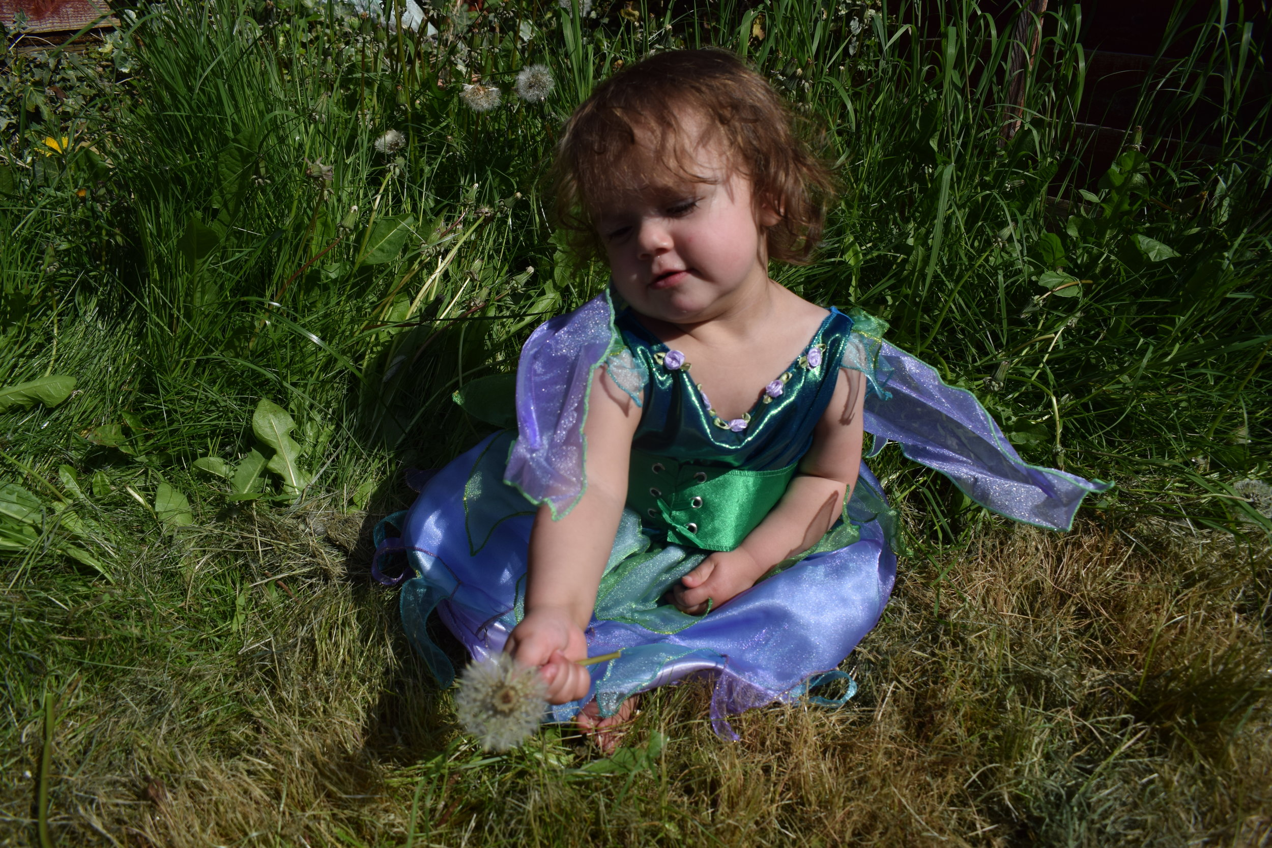 Pickle a little garden fairy in her outfit from Vegaoo