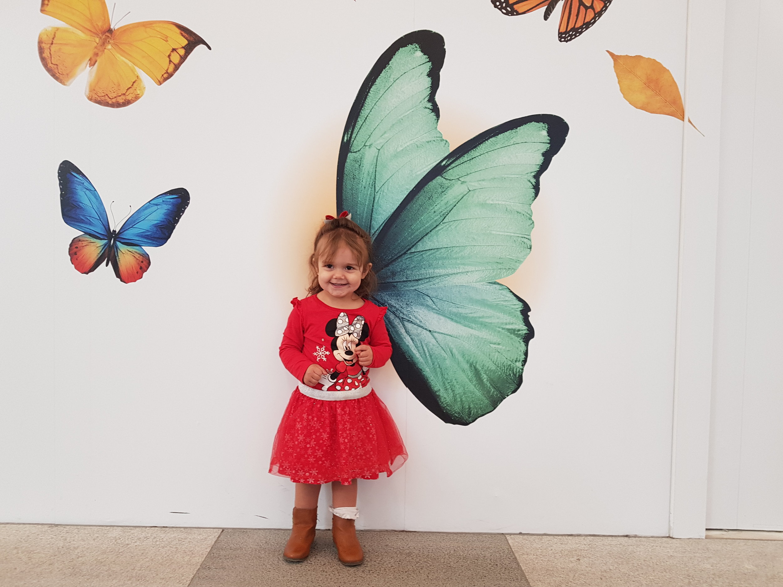 The cutest baby butterfly at the mural walls in Intu Watford