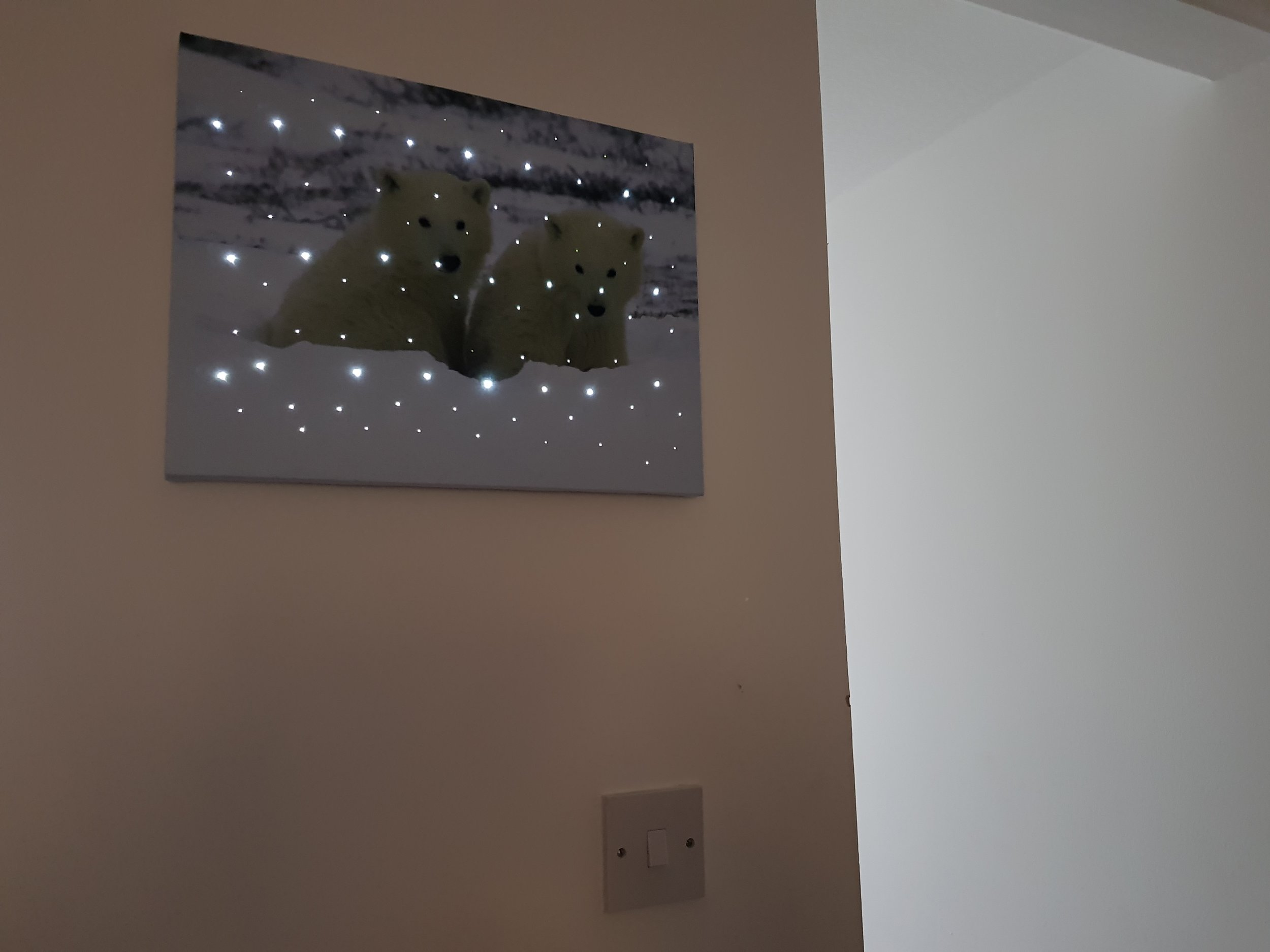 Flashing Polar Bear Canvas