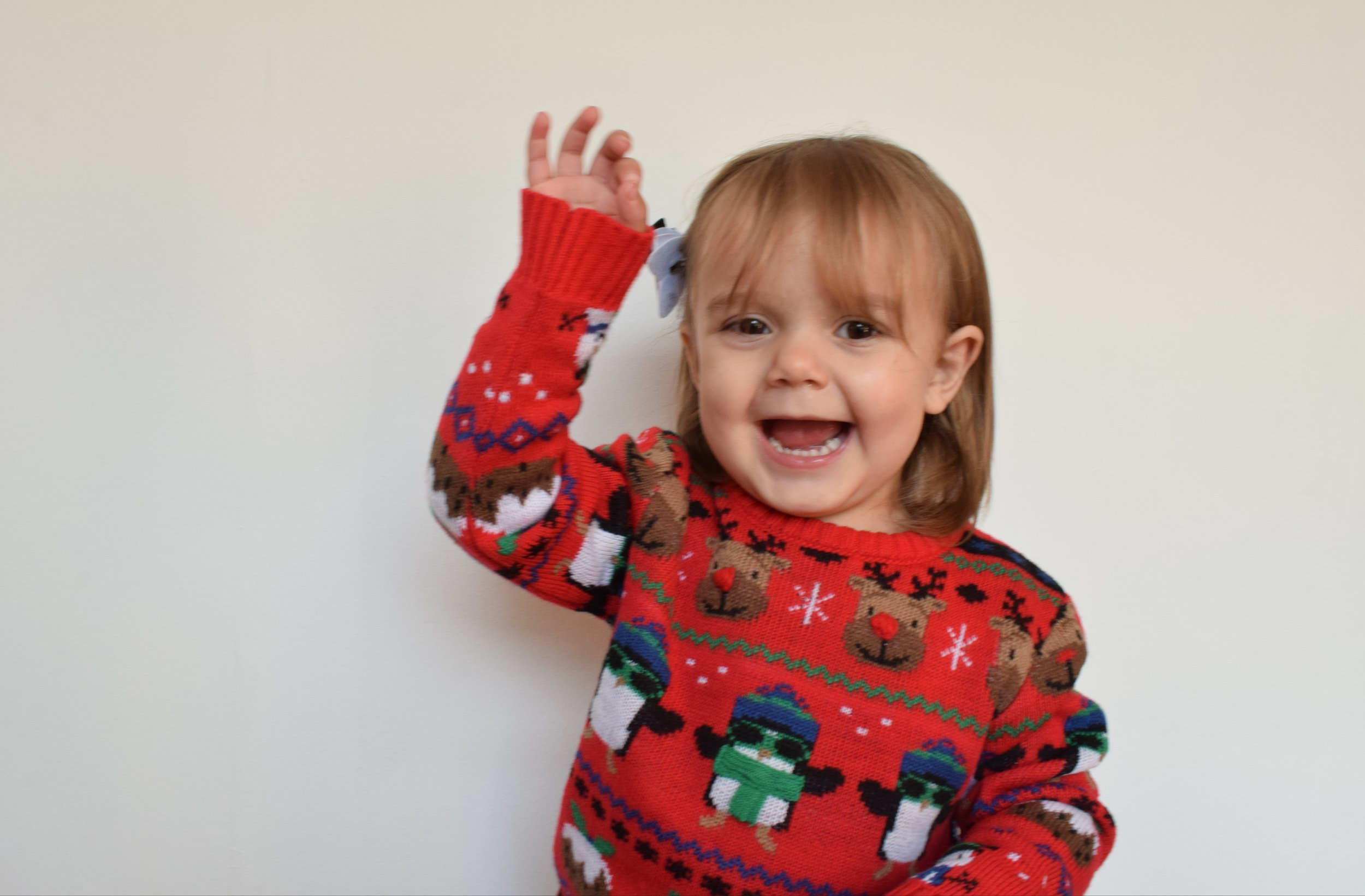 Pickle in a Christmas jumper from Morissons