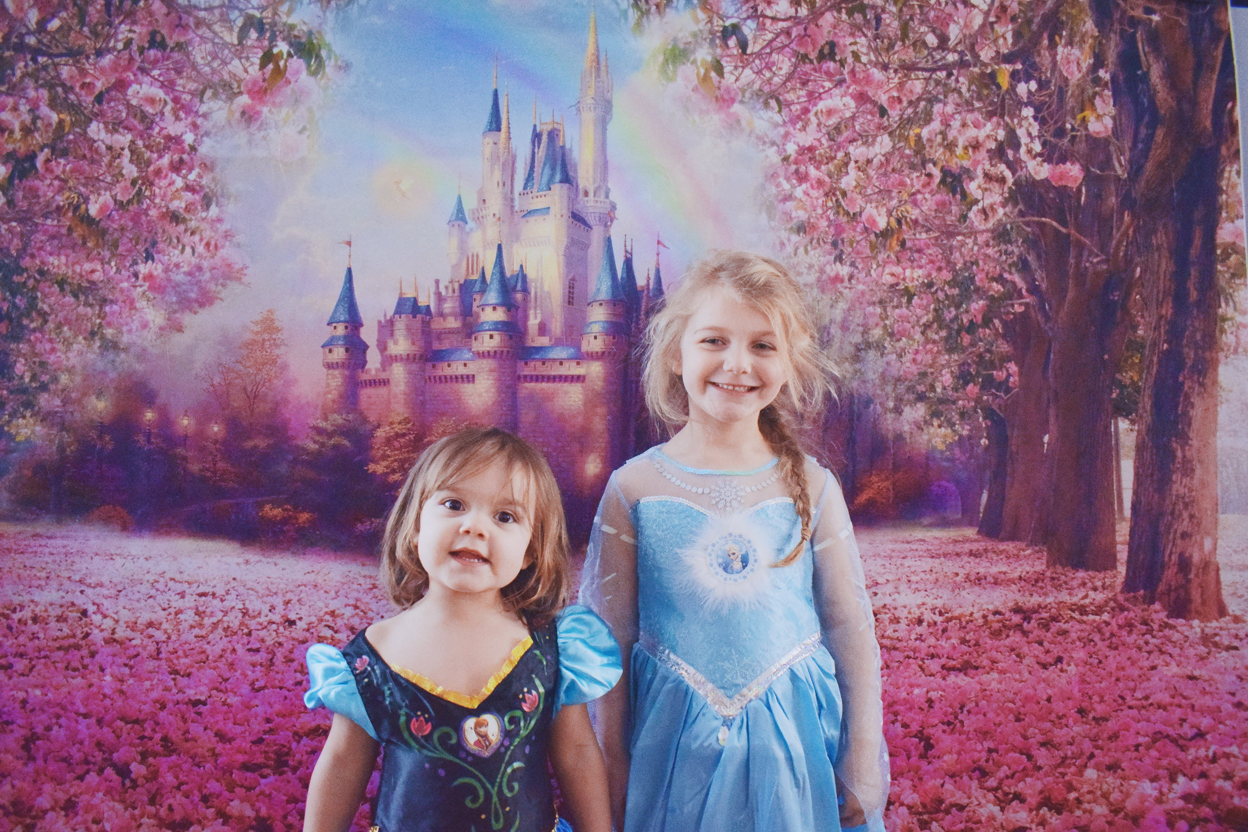 Disney's Frozen Anna and Elsa