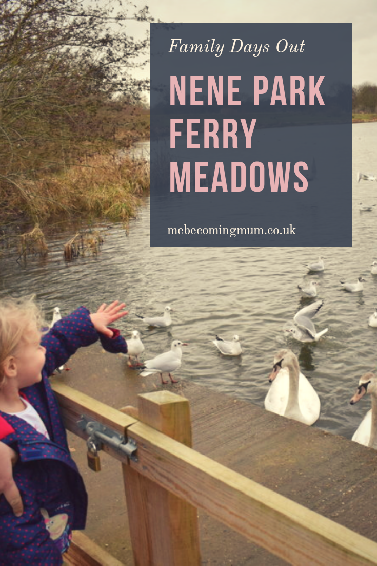 Nene Park Ferry Meadows Days Out for Kids UK