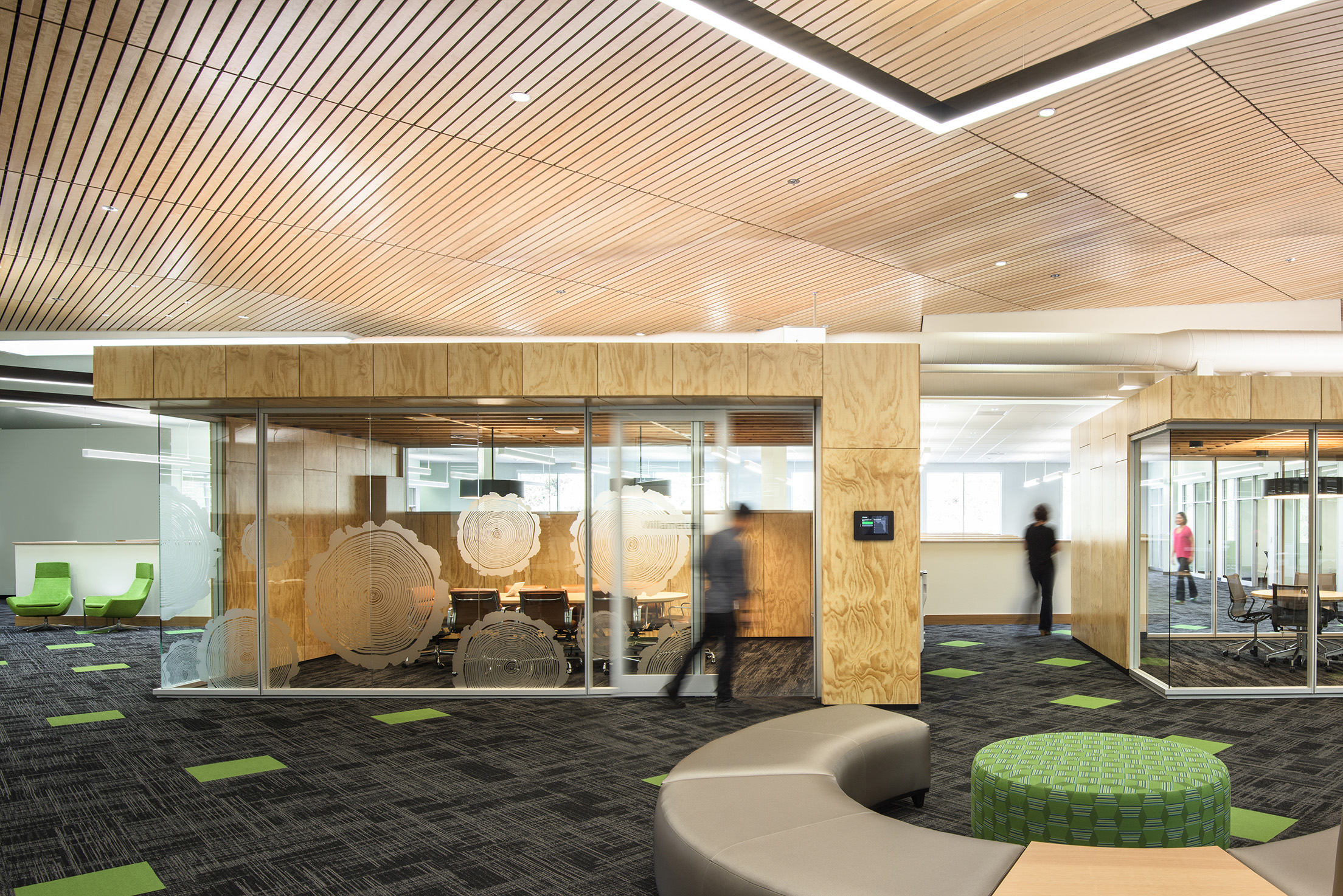 Sustainable Construction Plywood Office Design.jpg