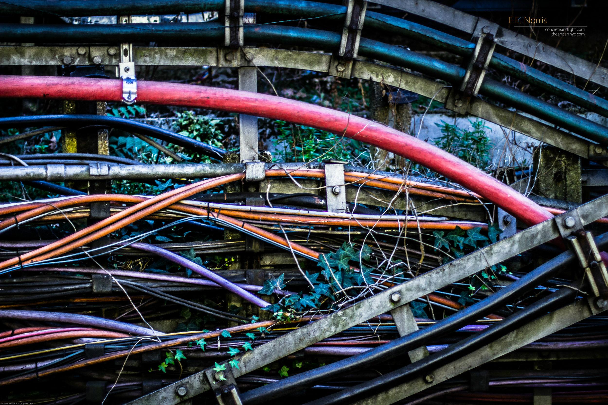 Tube's Tubes