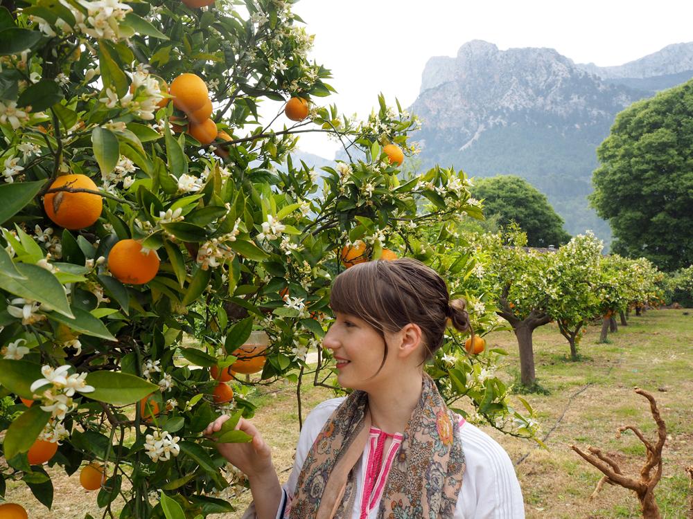 soller emma block ecovinyassa oranges