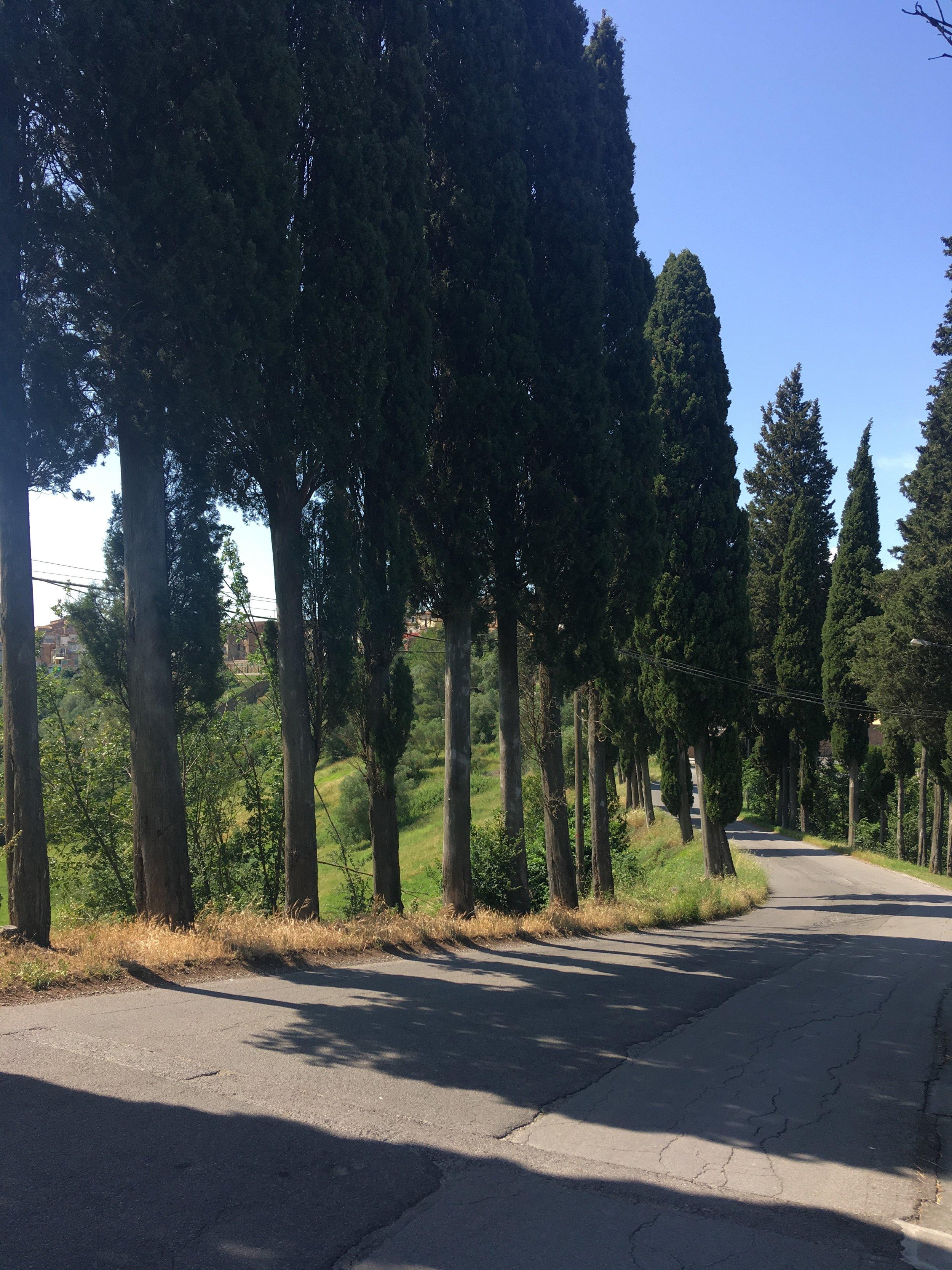 san miniato tuscany 5.JPG