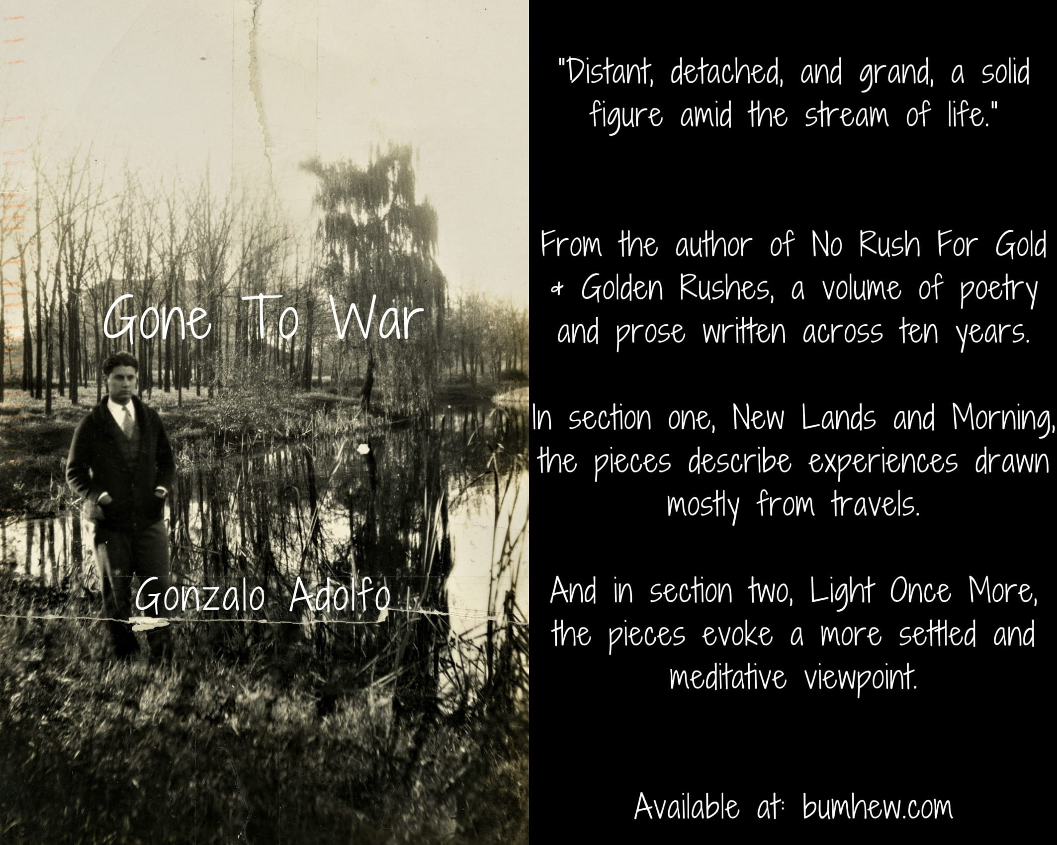 Gone To War. Published by Detached Books in November 2017. Click on image to purchase.