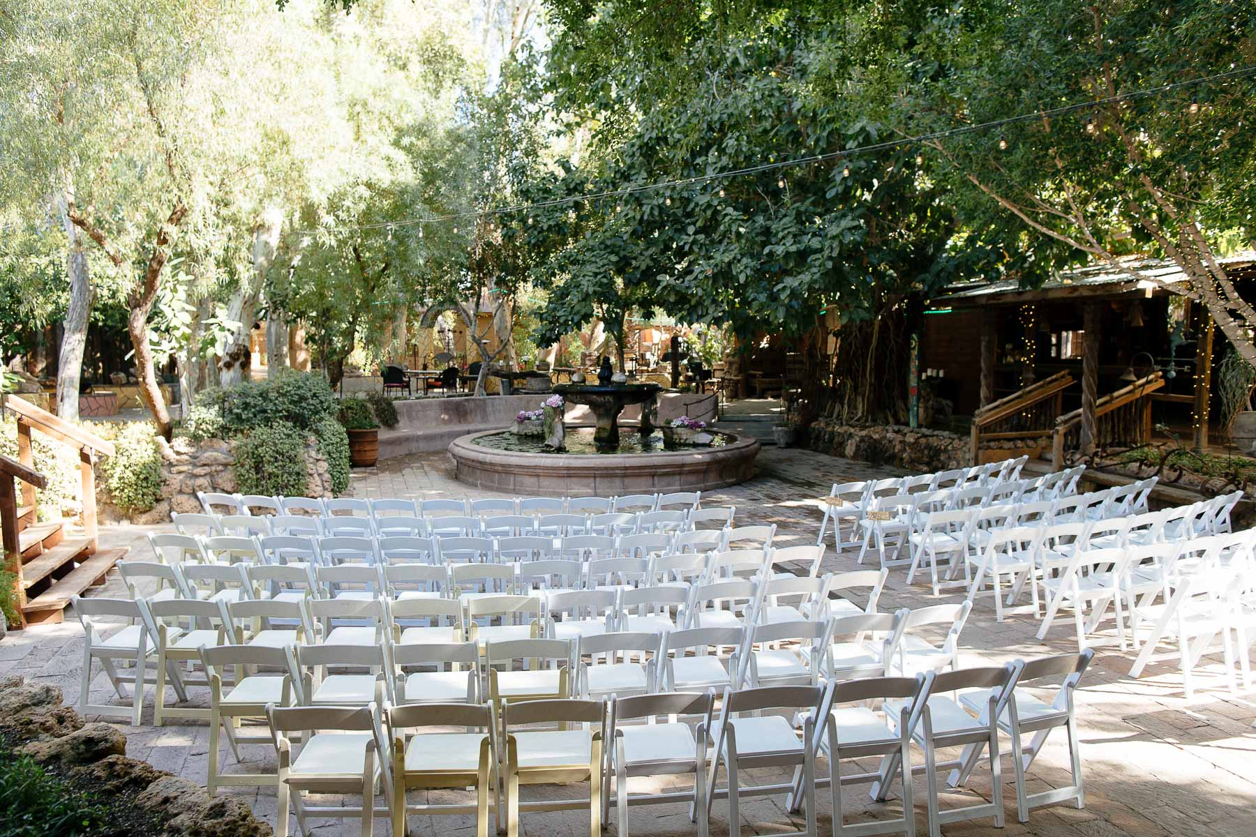 161112-Luxium-Weddings-Arizona-Jon-Madison-Boojum-Tree-First-Look-006.jpg