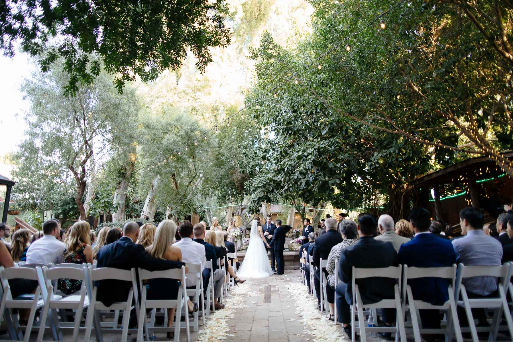 161112-Luxium-Weddings-Arizona-Jon-Madison-Boojum-Tree-First-Look-026.jpg