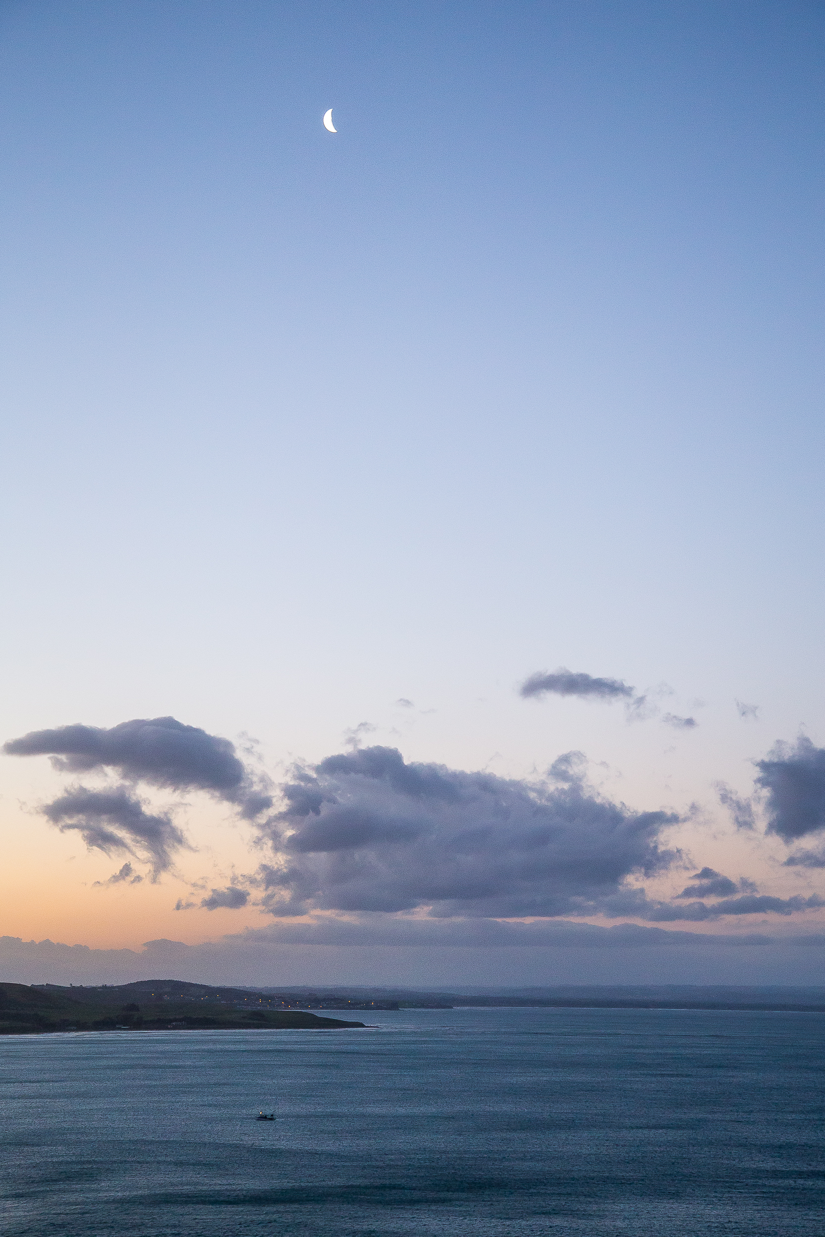 New Zealand Kaka Point