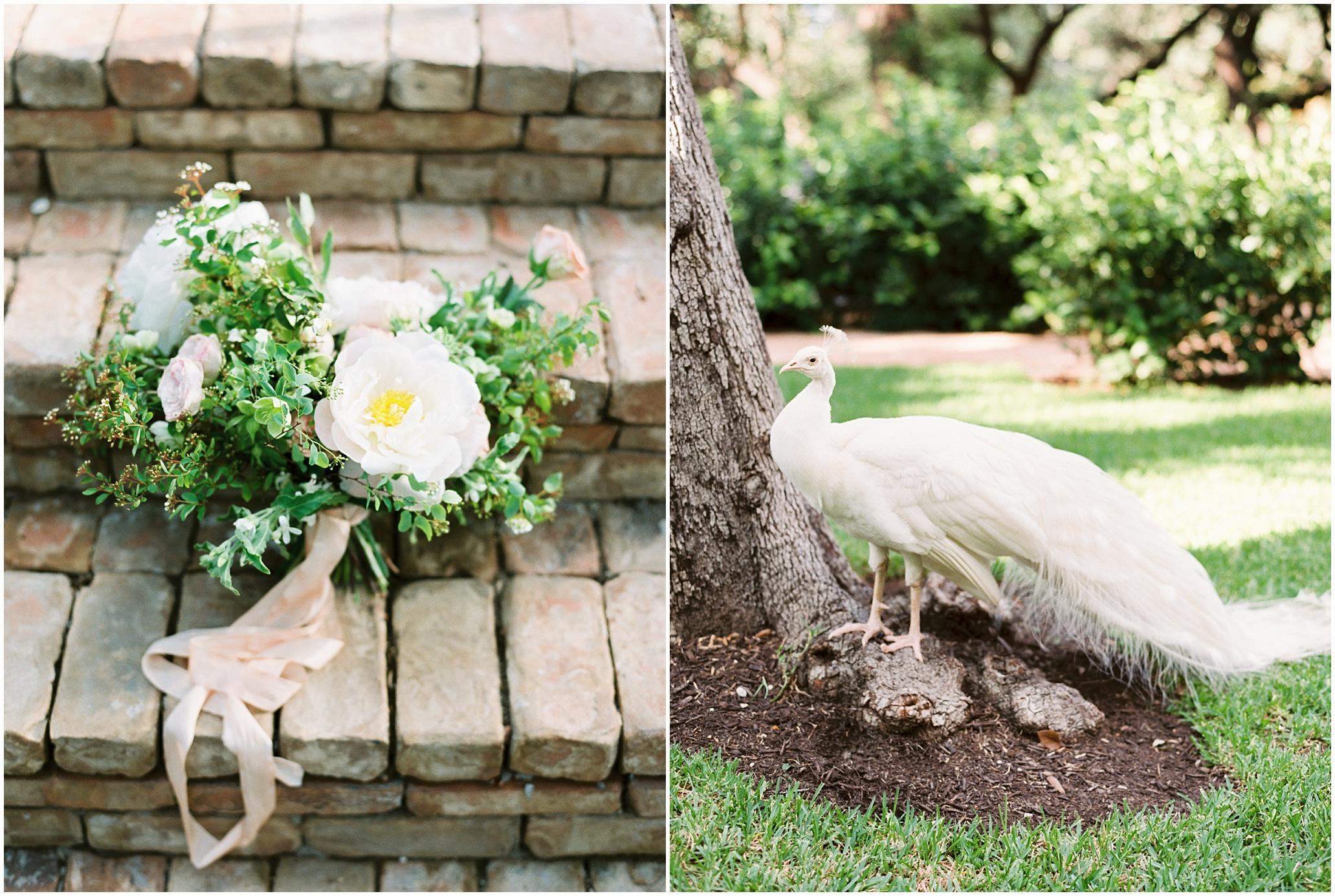 San Antonio Wedding Photographer, Film Photographer, Lost Mission_0105.jpg