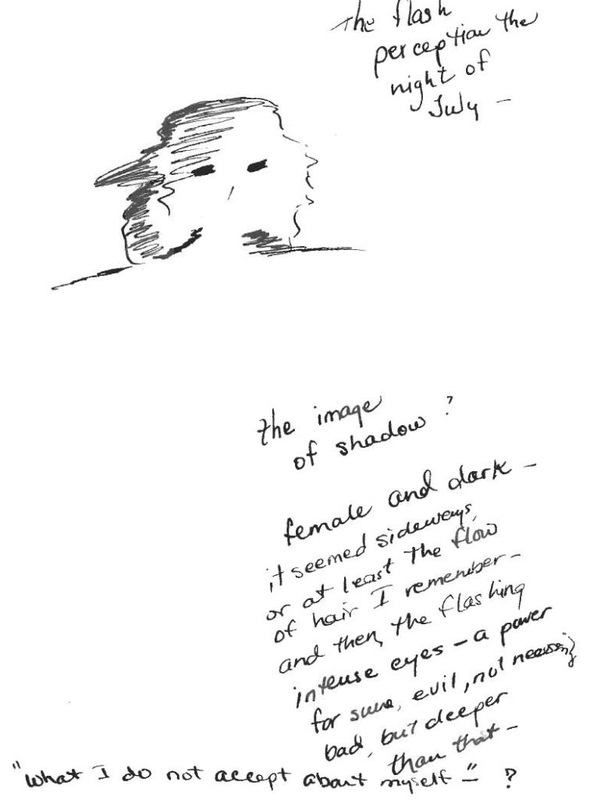 Experiencing the shadow - from a colleague's journal.