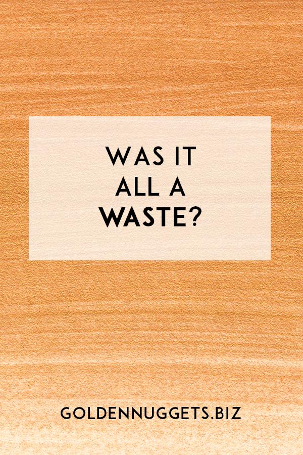 Was -It-All-A-Waste?