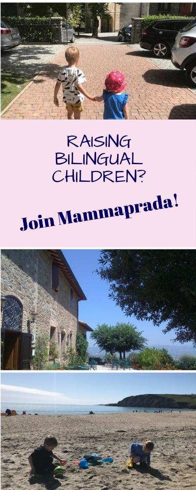 Village Bilingual Kids