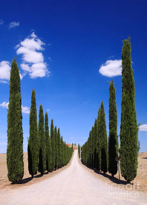 Credit: Fine Art America, 'Entrance to villa Tuscany'.
