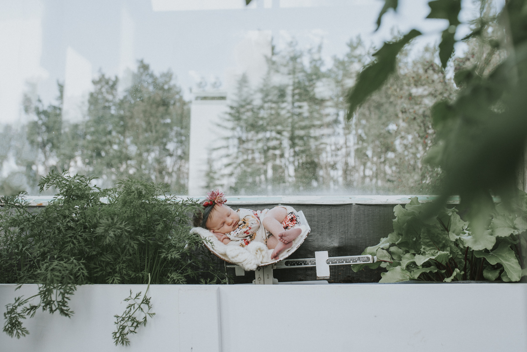 Newborn-lifestyle-photographer-dawson-creek.jpg