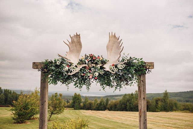 Janine asked me to create something to go with this gigantic moose rack that belonged to her Grandpa, I was so stressed out the entire time I was working on these flowers! I kept thinking how am I going to do this beautiful arch justice... I am so pleased with how it turned out! 💓 thank you Janine @albinozombie for always trusting in my creativity. • • • • • #weddingflower #arch #weddingarchinspo #weddingflowerinsiration #weddingdecor #weddingdecorgoals #weddinggoals #weddingphotomag #dawsoncreekweddings #dawsoncreekweddingphotographer #weddingphotography #sabrinamayphotography