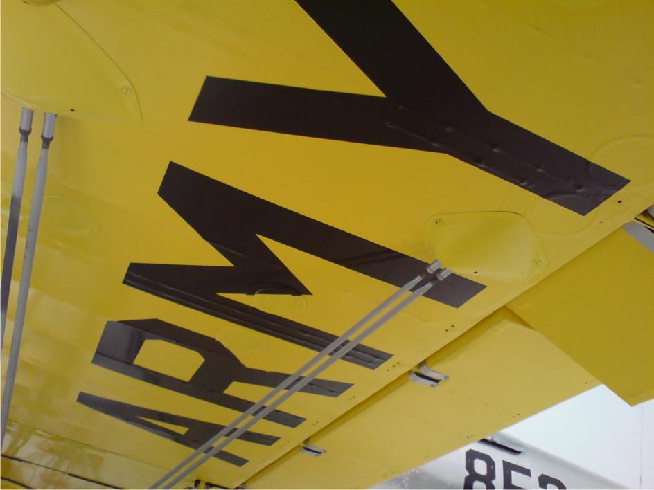 army under wing.jpg