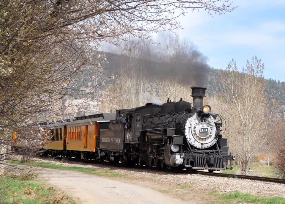 Spring along tracks.JPG