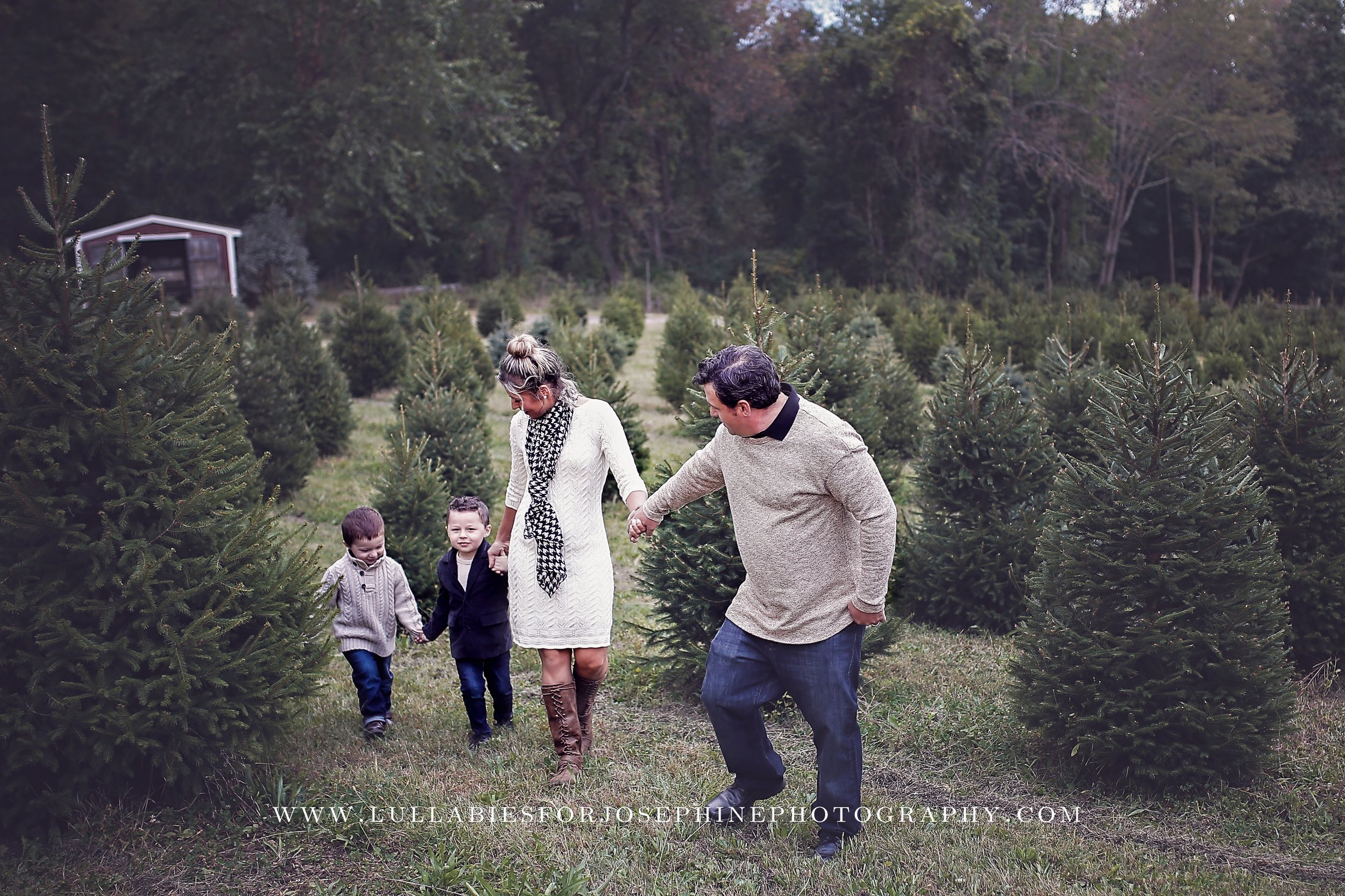 Morris County NJ Newborn family photographer-holiday-christmas tree-love-green-winter