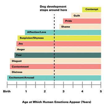 Dog emotional chart