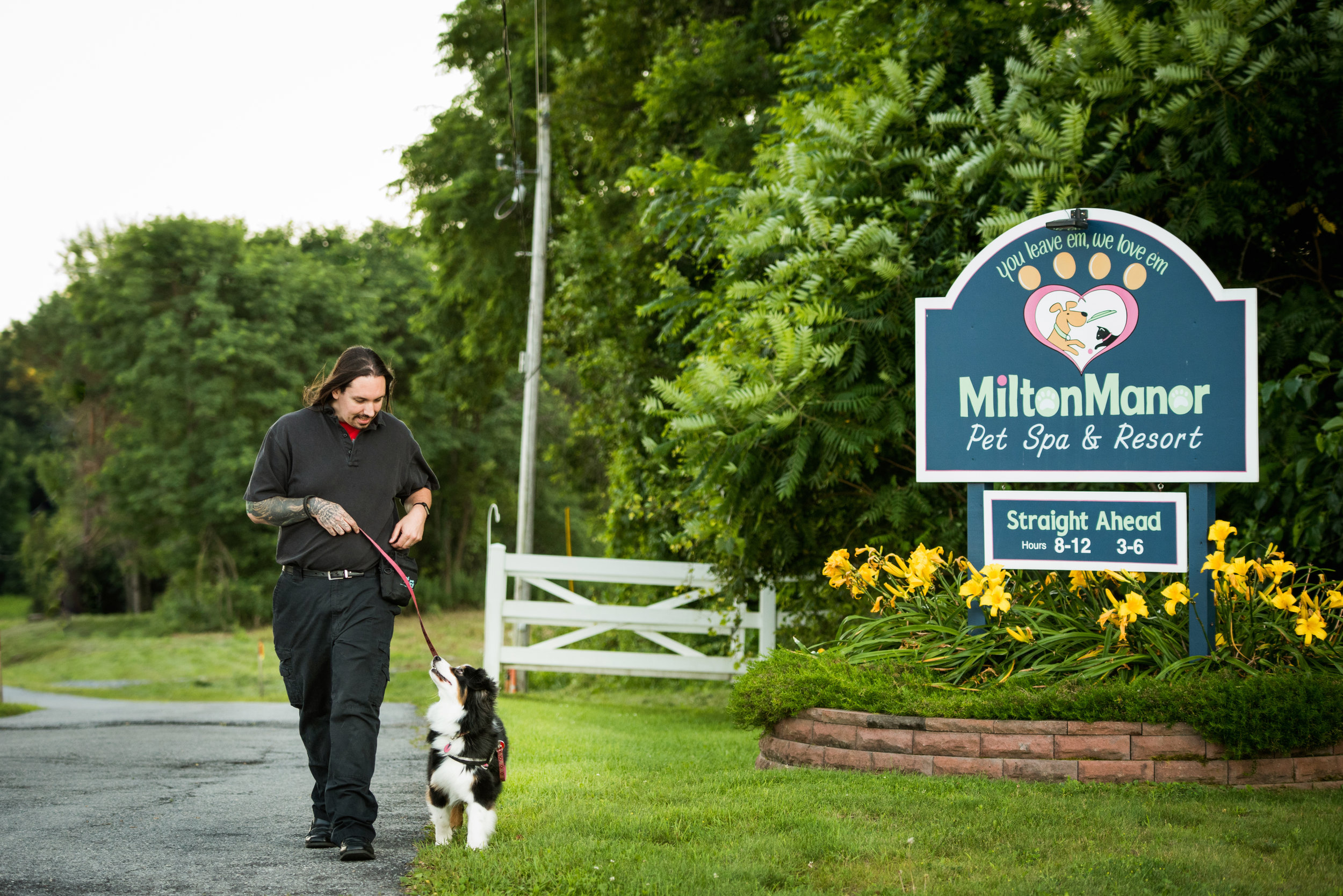 Board and Train Dog Training at Milton Manor