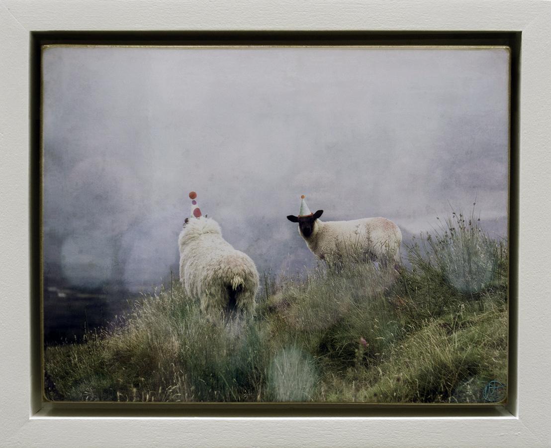Irish Series Two Sheep.jpg