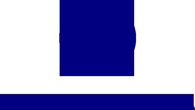 nardi media logo.png