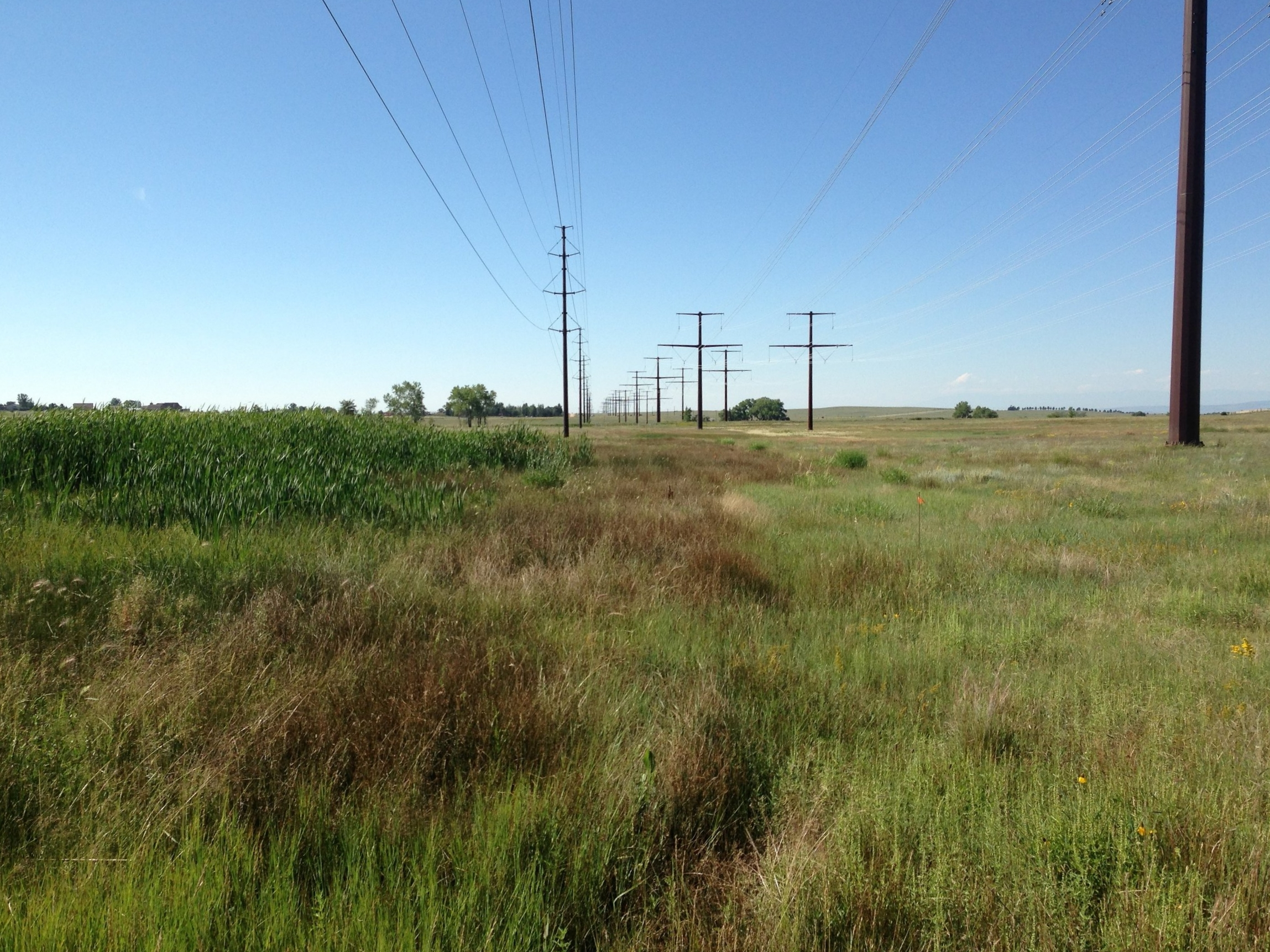 Golden West Wind Energy Project