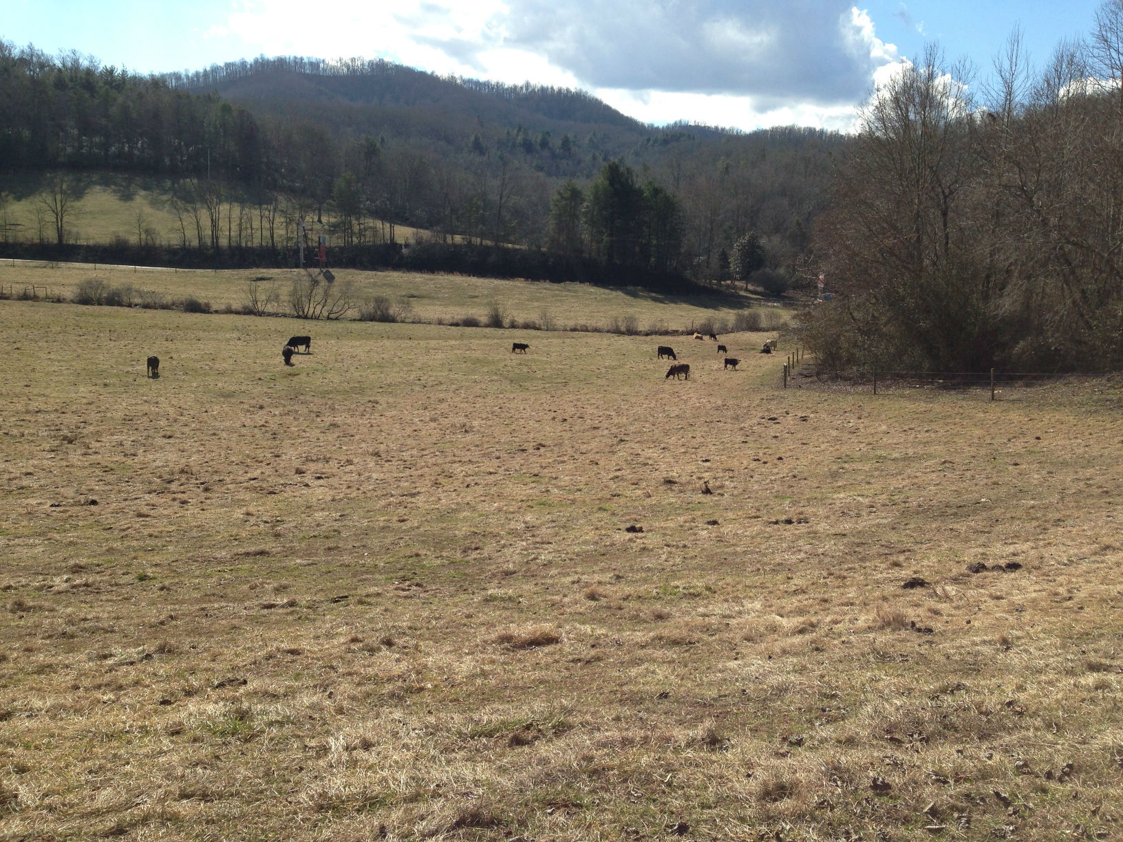 Western North Carolina Solar Projects - Phase 1 ESA
