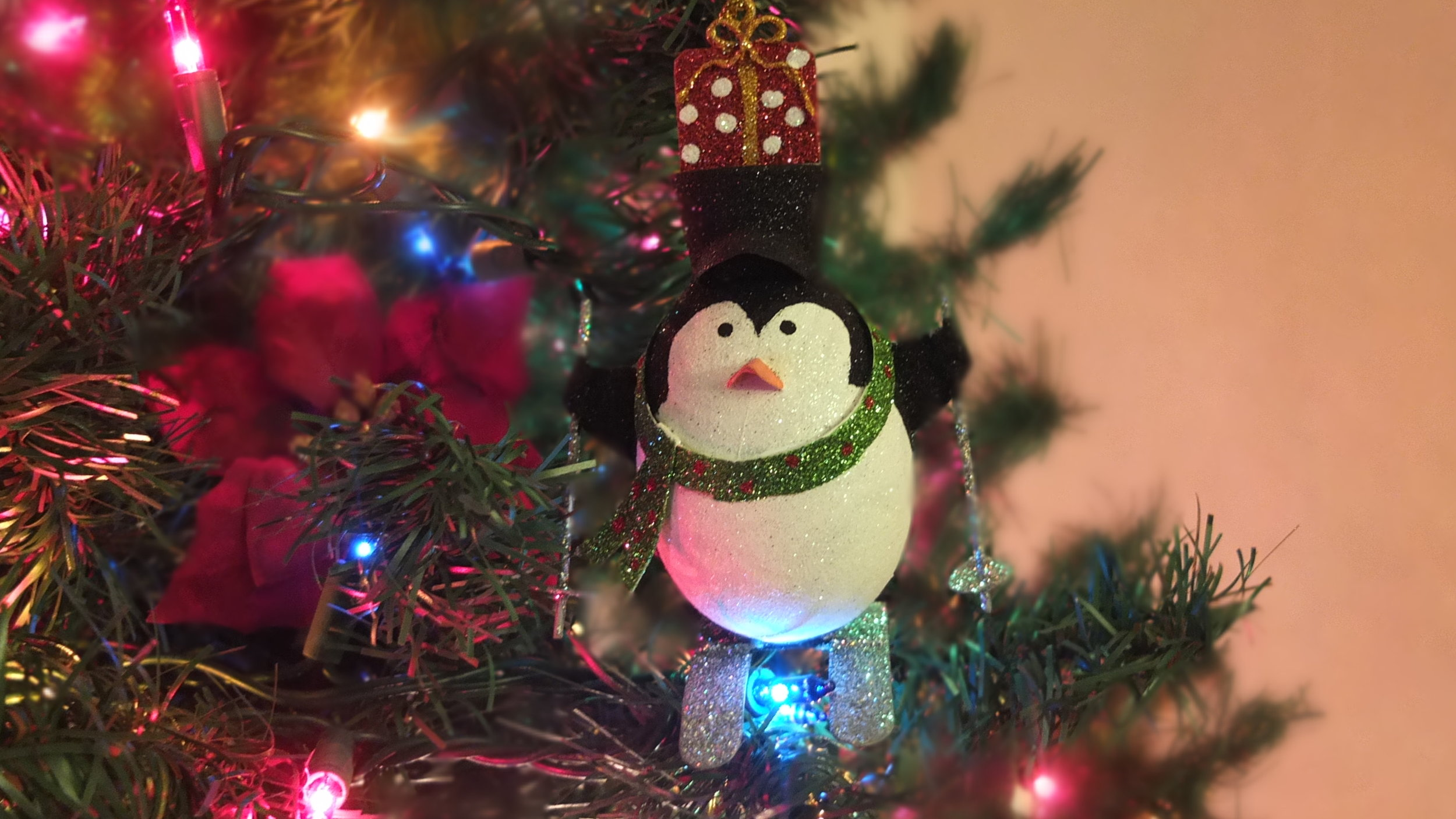 A penguin Merry Christmas.