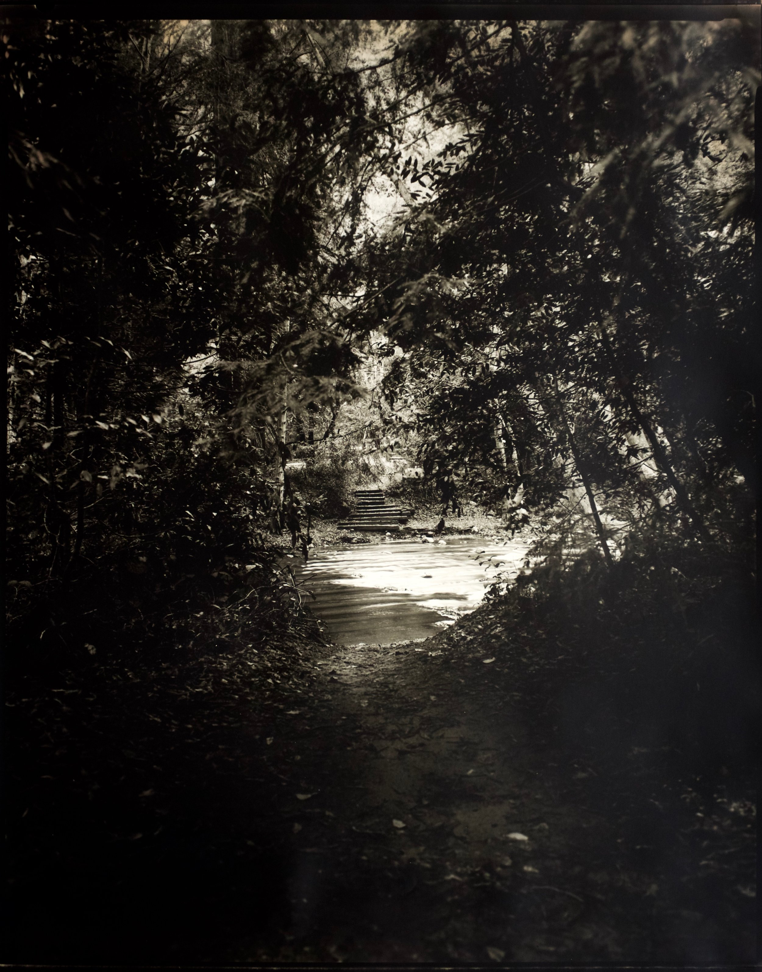 Crossing Over,  50 in. x 41 in., collodian negative hand printed on Ilford paper, 2018.