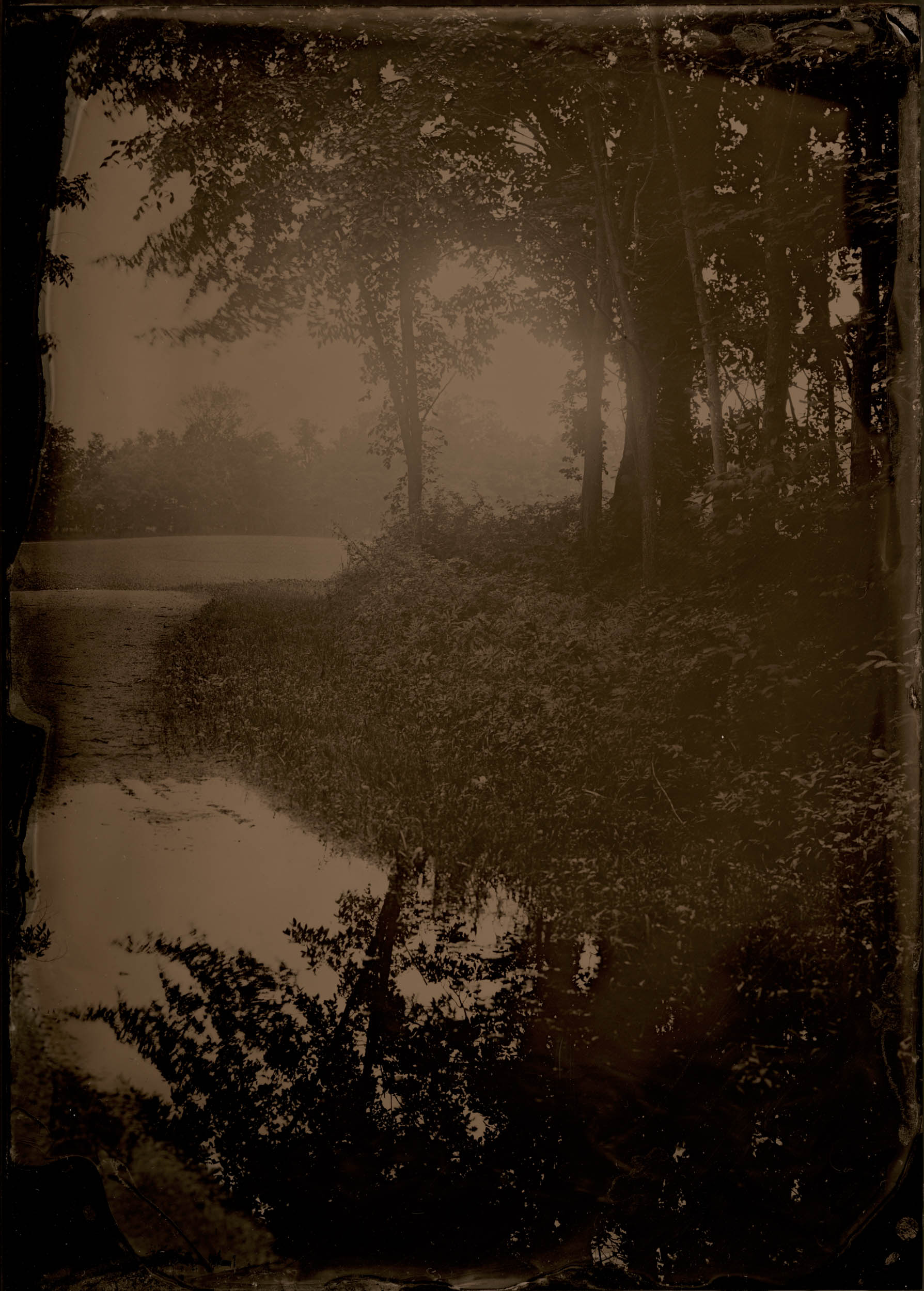 Mud Puddle, ambrotype original, archival pigment print, 40 in. x 50 in., 2018