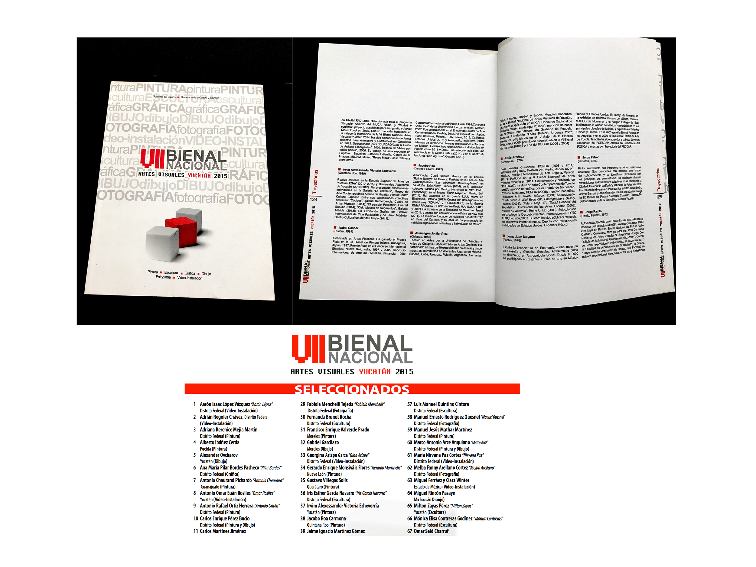 ROA _ VII BIENAL NACIONAL YUCATAN_  PRESS-3.jpg
