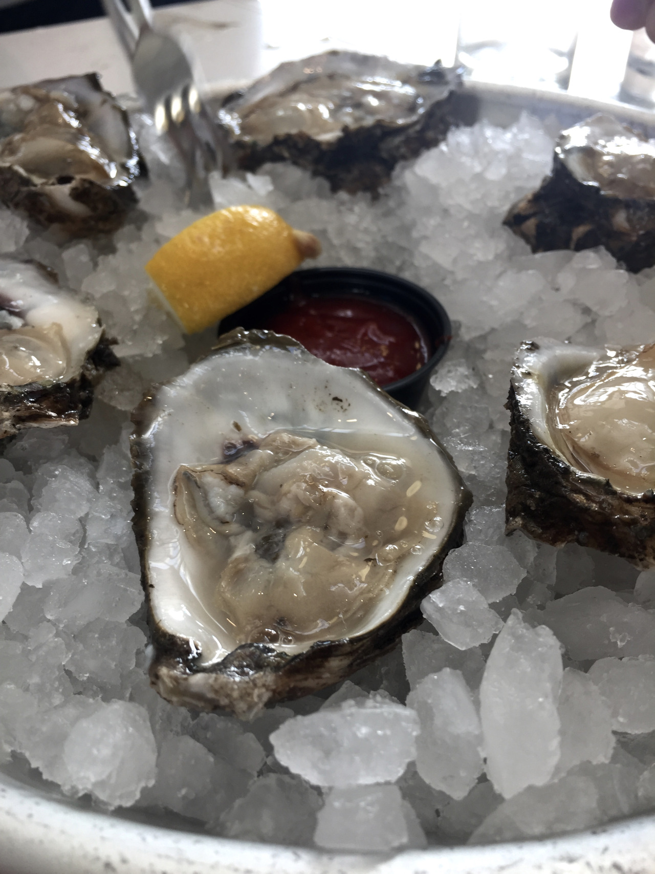 Fresh oysters from St. Roch Market
