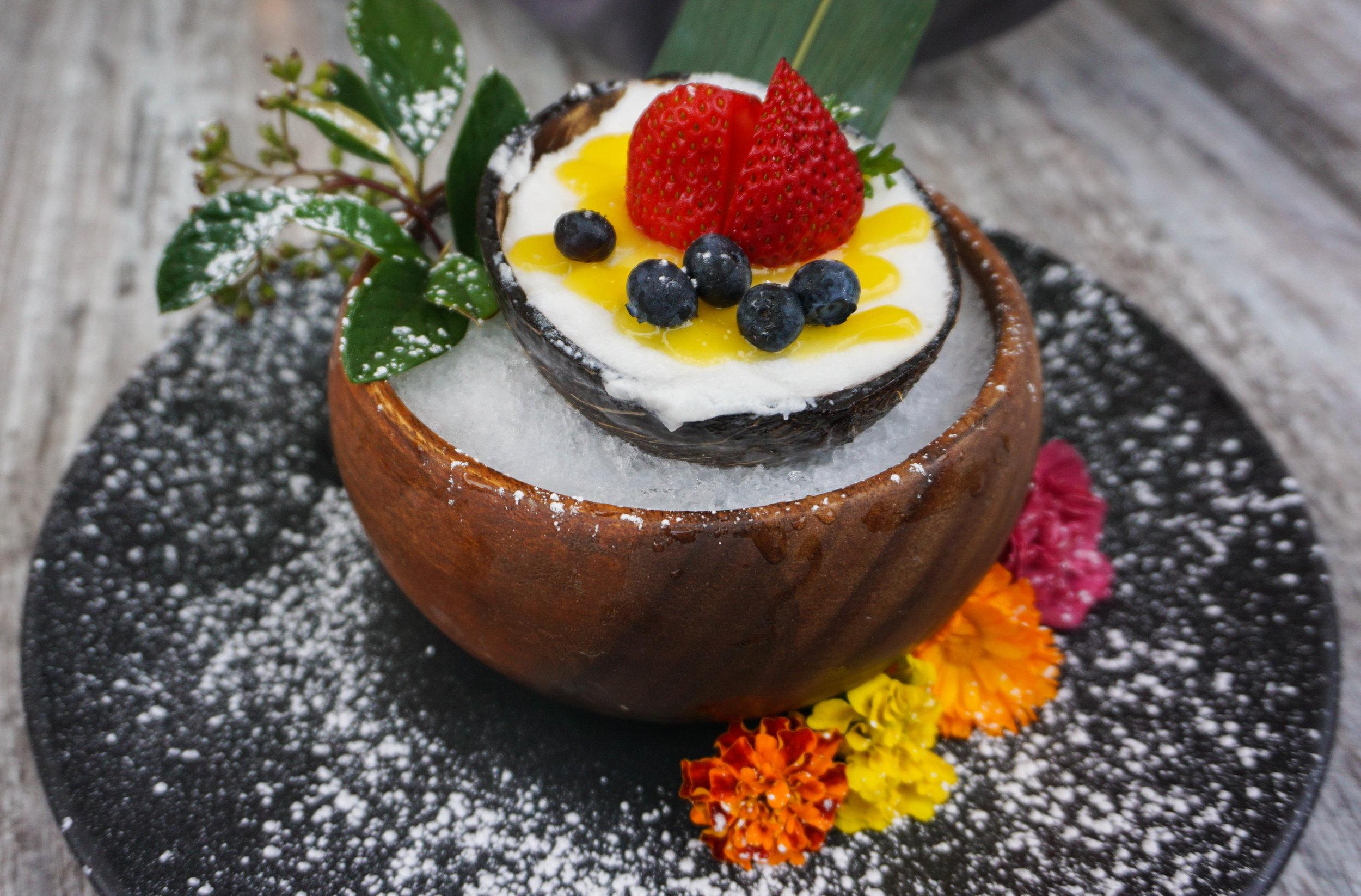 Some kind of coconut ice cream