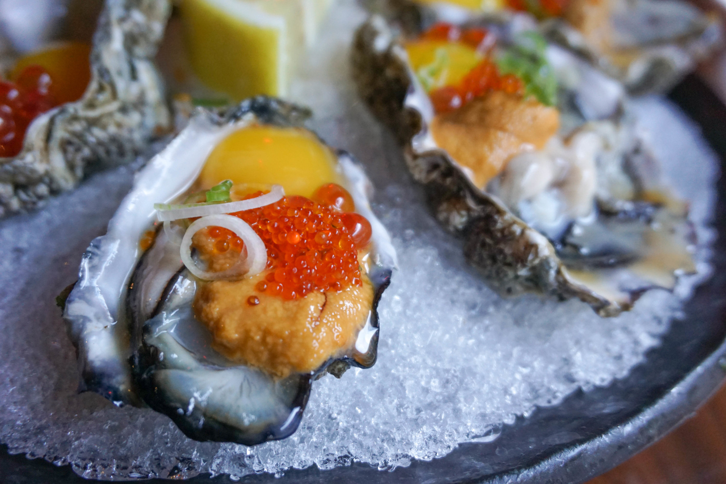 These oysters came with quail egg and roe—so good!