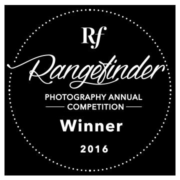 Winner_RF_Annual_16.png
